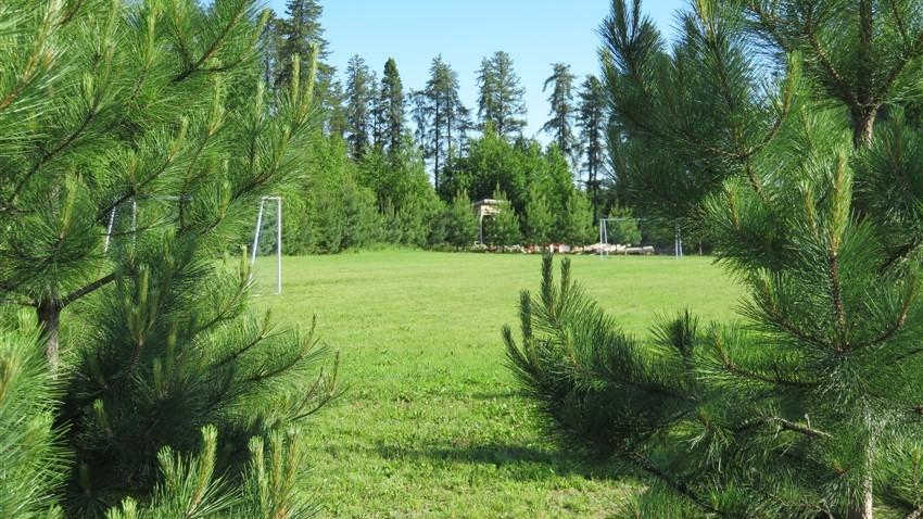 terrain-soccer-2
